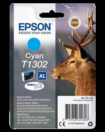 O-EPS-C13T13024012XL